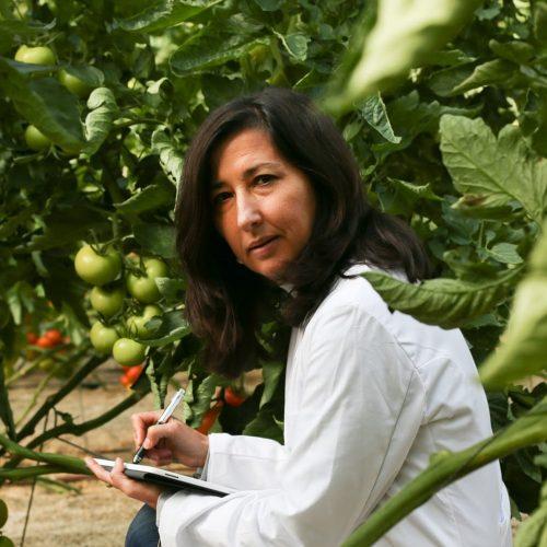 María Dolores Fernández Fernández